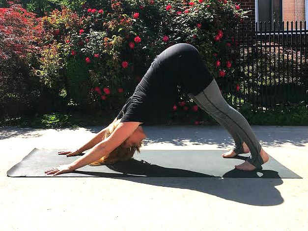 Yoga Pose Downward Dog