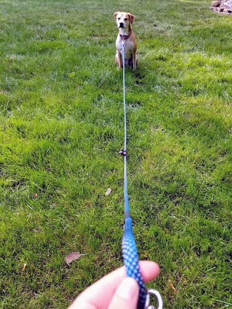 Ruff Rescue Rope