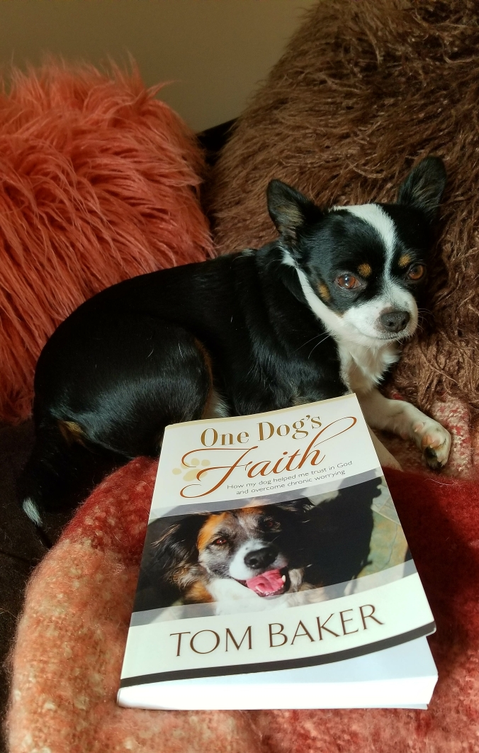 One Dog's Faith by Tom Baker